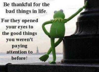 Wise Words, Kermit