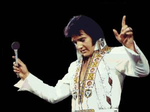 Elvis Presley Wallpaper 6