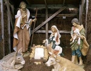 5 nativity