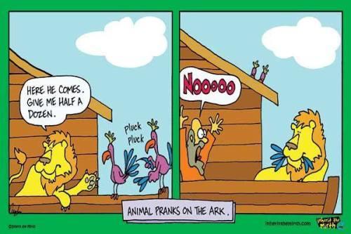 Noah wayyyy!