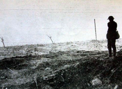 collect pix paul lewis; world war one welch fusiliers.. pilken ridge, belgium july 1917